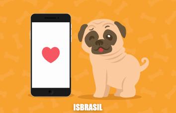 Petshops online especializados na raça de cachorro pug