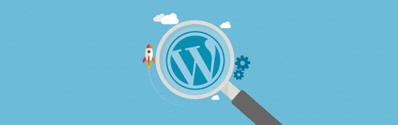 SEO no WordPress. Saiba como fazer!