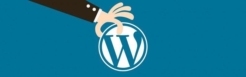 Porque escolher o WordPress para o seu próximo projeto?