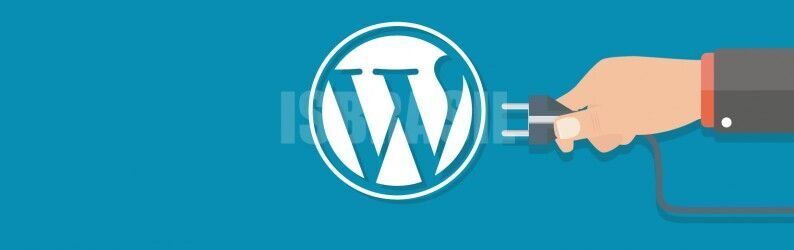 WordPress agora aceita plugins e temas de terceiros; saiba mais