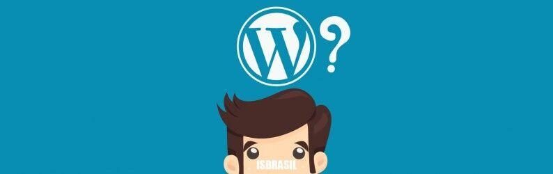 Porque usar uma Hospedagem WordPress?