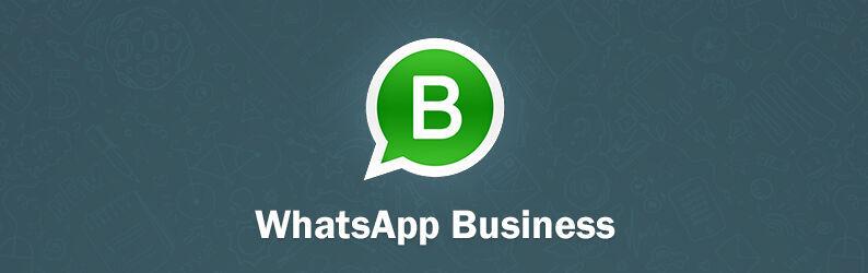 WhatsApp Business: como usá-lo na agência de marketing