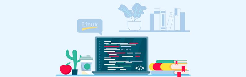 Comando cat no Linux: o que é e como utilizar